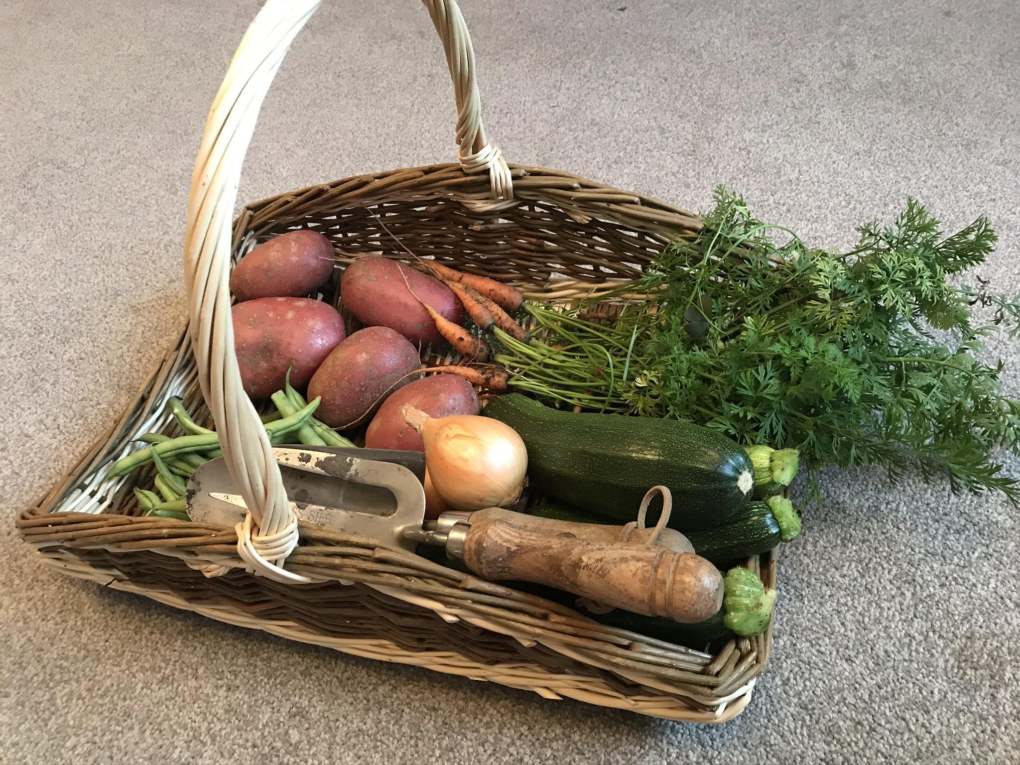 Countryworld Baskets